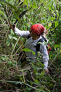Rosa Maria Roman-Cuesta hacks her way through the jungle searching for orchids