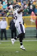 Baltimore Ravens outside linebacker Terrell Suggs (55) jumps and celebrates after sacking Green Bay Packers quarterback Brett Hundley (7) at the Packers 30 yard line for a loss of 12 yards on a fourth down play during the 2017 NFL week 11 regular season football game against the against the Green Bay Packers, Sunday, Nov. 19, 2017 in Green Bay, Wis. The Ravens won the game in a 23-0 shutout. (©Paul Anthony Spinelli)