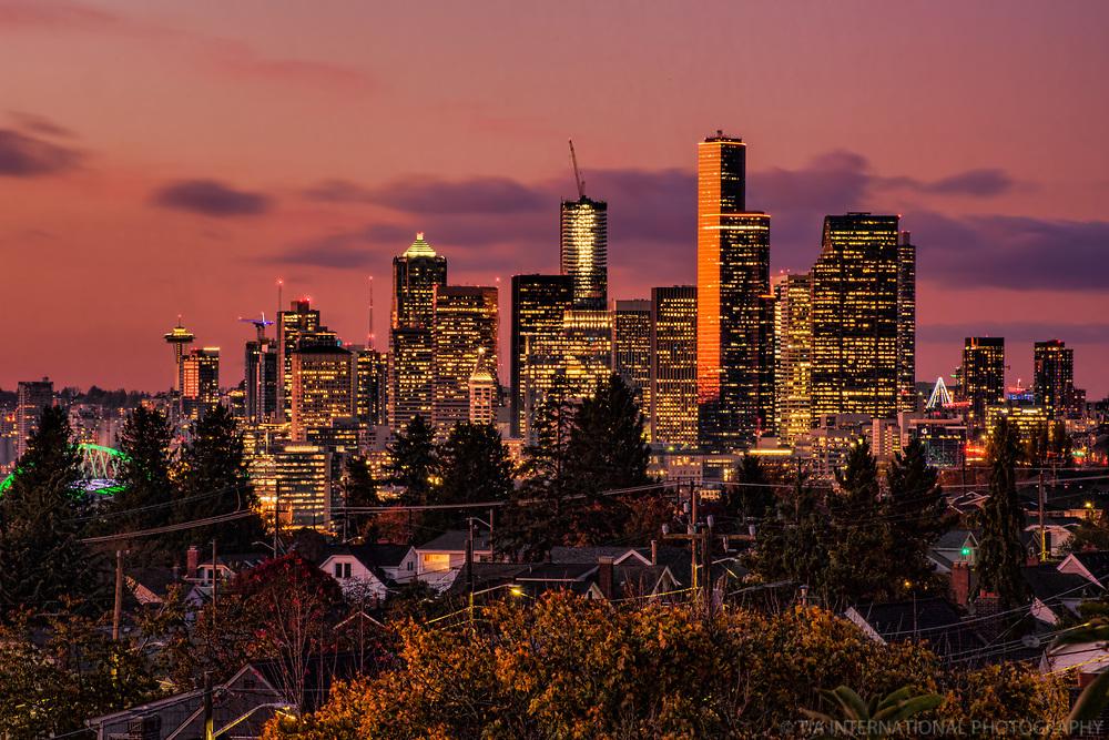 Seattle Skyline (Copper Autumn)