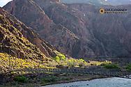 Footbridge to Phantom Ranch above The Colorado River in Grand Canyon National Park, Arizona, USA