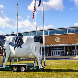 Harrisburg, PA / USA - January 6, 2020: A large dairy cow sign from Turkey Hill Dairy at the Entrance of the Farm Show Building in Harrisburg, Pennsylvania.