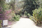 Rancho Santa Ana Botanic Garden