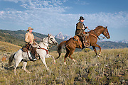 Cowboys and Wranglers in the modern day wild west, mounted on a horse and in western gear.