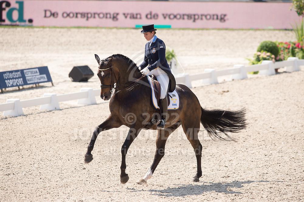 Tinne Vilhelmson Silfven (SWE) & Don Auriello - Dressage Grand Prix - CDIO5 - CHIO Rotterdam 2016 - Kralingse Bos, Rotterdam, Netherlands - 23 June 2016