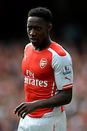 Arsenal's Danny Welbeck in action. Barclays Premier league match, Arsenal v Manchester city at the Emirates Stadium in London on Saturday 13th Sept 2014.<br /> pic by John Patrick Fletcher, Andrew Orchard sports photography.