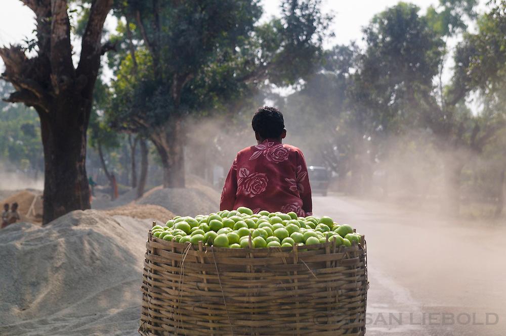 A rickshaw puller transports a large basket of green apples in northern Bangladesh.