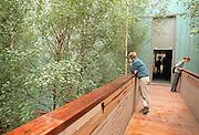 "Duitsland, Hannover expo 2000, mei 2000.Het ""Berkenbos""in het Finse paviljoenFoto: Flip Franssen/Hollandse Hoogte"