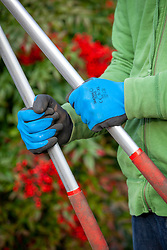 Showa all weather gardening gloves