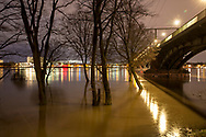 flood of the river Rhine on February 4th. 2021, the flooded meadow in the district Poll, trees in water, South bridge, Cologne, Germany.<br /> <br /> Hochwasser des Rhein am 4. Februar 2021, die ueberfluteten Rheinwiesen in Poll, Baeume stehen im Wasser, Suedbruecke, Koeln, Deutschland.