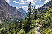 Vallunga/Langental, Puez Group, Dolomites, South Tyrol, Italy, Europe. The beautiful ski resort of Selva di Val Gardena (German: Wolkenstein in Gröden; Ladin: Sëlva Gherdëine) makes a great hiking base in the Trentino-Alto Adige/Südtirol (South Tyrol) region of Italy. For our favorite hike in the Dolomiti, start from Selva with the first morning bus to Ortisei or St. Christina, take the Seceda lift, admire great views up at the cross on the edge of Val di Funes (Villnöss), then walk 12 miles (2000 feet up, 5000 feet down) via the steep pass Furcela Forces De Sieles (Forcella Forces de Sielles) to beautiful Vallunga (trail #2 to 16), finishing where you started in Selva. The hike traverses the Geisler/Odle and Puez Groups from verdant pastures to alpine wonders, all preserved in a vast Nature Park: Parco Naturale Puez-Odle (German: Naturpark Puez-Geisler; Ladin: Parch Natural Pöz-Odles), including the deeply glaciated U-shaped valley of Vallunga (Langental). As sheep and cows graze en route, Saint Sylvester's Chapel (San Silvestro) in Vallunga is fittingly dedicated to the patron saint of cattle and contains 300-year-old frescoes depicting the life of Jesus. UNESCO honored the Dolomites as a natural World Heritage Site in 2009.