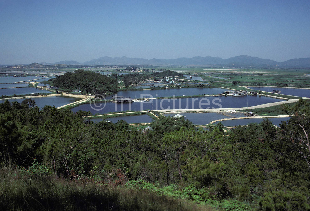 A 1970s landscape of duck farms and rural paths at Lok Ma Chau in the New Territories of northern Hong Kong, a village within the territorys Frontier Closed Area, a buffer zone established by the Hong Kong government to prevent illegal immigrants from mainland China, and access to the area is restricted to those holding Closed Area Permits, on 16th April 1979, in Hong Kong, China.