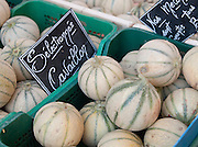 Melons at a market in Valence, in the Drôme region, France