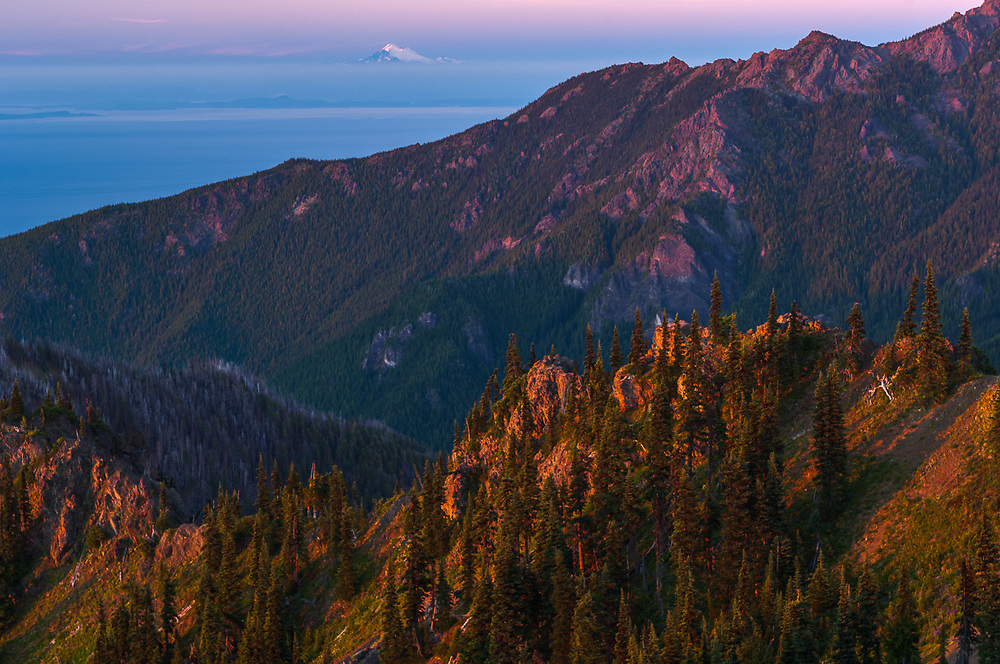 Mount Baker and the Strait of Juan de Fuca, evening light, July, view from Huricane Hill, Olympic National Park, Clallam County, Washington, USA