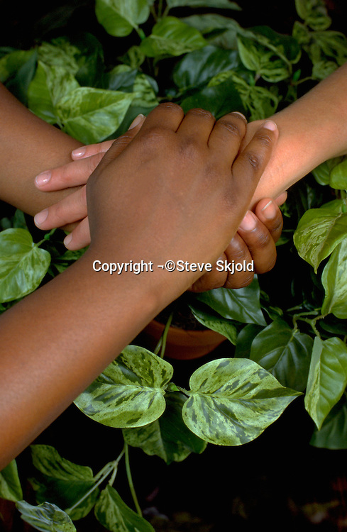 African American and white hands consoling each other age 45.  St Paul  Minnesota USA