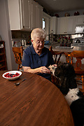 Mom got interrupted eating her berries by Lulu, her Standard Poodle begging for some.