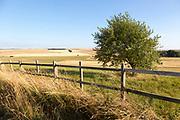 Rolling hills and fields chalk landscape near Beckhampton, Wiltshire, England, UKWiltshire, England, UK