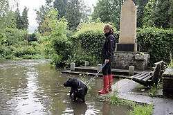 © Licensed to London News Pictures. 11/06/2012. Kent. UK. The River Darent in Eynford on flood alert today 11/06.2012. A woman and her dog on the banks of the River Darent in Shoreham Village. Photo credit : Grant Falvey/LNP