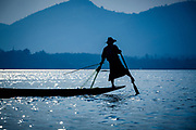 Fisherman, leg-rowing, Lake Inle, Myanmar. Showing off the mastery of an unusual technique when it comes to paddling their boats. Carefully balancing on one leg, wrapping their second leg around the oar to guide the vessel through the freshwater lake. The skilled technique means the fishermen can stand and look out for reeds in the water and keep both hands free to handle the cumbersome nets.