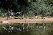 Temporary Fishing Camp<br /> Mapari River<br /> Mapari<br /> Rupununi<br /> GUYANA<br /> South America
