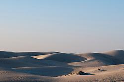 , Oman - 10/26/2013 - Khaluf desert, Oman.(Photo by SharpShooters/VWPics) *** Please Use Credit from Credit Field *** *** Please Use Credit from Credit Field ***