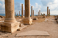Column and sections of mosaic floor in the Roman and Byzantine ruins of Al-Mina Archaeological Site in Tyre, Lebanon. Buildings from modern Tyre in the background.