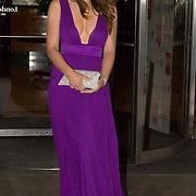 LONDON ENGLAND - MAY 20  Liz Hurley at  Hilton Hotel  Asian Women of Achievements Awards 2008, Hilton Park Lane, London, Britain - 20 May 2008