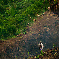 Community managed foresting in Madagascar
