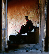 Portrait of a young monk sat inside a monastery, Ladakh, India