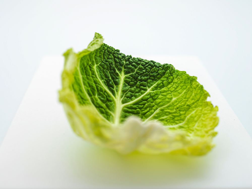 Savoy cabbages leaves on a white background