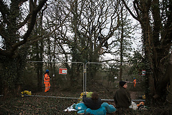 Harefield, UK. 7 February, 2020. Environmental activists from Extinction Rebellion climb a veteran oak tree close to the Harvil Road wildlife protection camp in order to try to protect it from felling. HS2 are expected to try to fell large numbers of mature trees in the immediate vicinity over the weekend even though the high-speed rail link is still awaiting Boris Johnson's approval.
