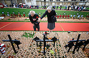 11/11/2009 The British Legion Field of Remembrance at Westminster Abbey