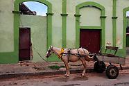 Gibara horses.