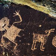 USA, AZ, Arizona, West, Southwest, Petrified Forest, Ancient Native American petroglyphs  in Petrified Forest National Park, AZ.