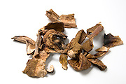 Dried porcini mushrooms Boletus edulis.