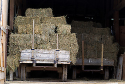trucks with bales of hay loaded in a barn