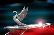 Detail of american car