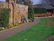 ADFTJE Municipal gardener in town park working at flower beds and borders Elmhurst Park Woodbridge Suffolk England