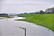 Nederland, Nijmegen, ooijpolder, 6-1-2018Het waterpeil van de rivier de Waal stijgt weer.  De uiterwaarden lopen onder. Het vee is naar hoger land gedreven. Mensen wandelen en fietsen op de dijkFoto: Flip Franssen