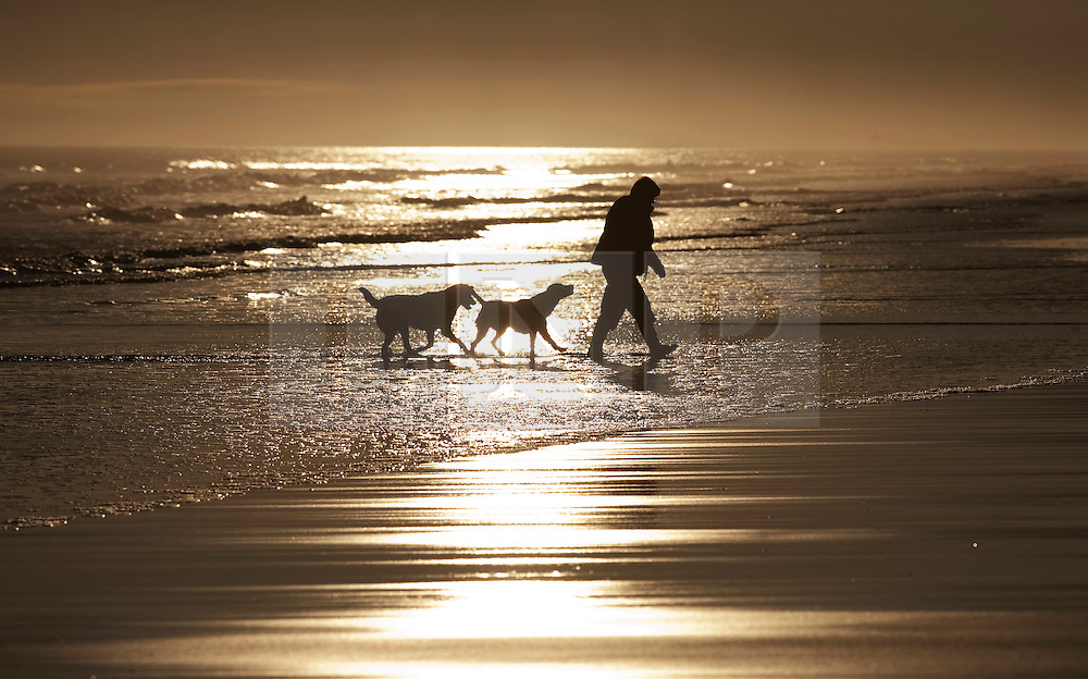 © Licensed to London News Pictures. 12/03/2012. Bamburgh, UK. A man walking two dogs in the sea along Bamburgh Beech at sunrise in Northumberland, North East England on March 12th, 2012. Photo credit : Ben Cawthra/LNP.