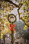 Christmas decorations on a gas lamp in Savannah, GA.