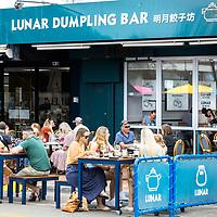 Lunar Dumpling Bar 2021