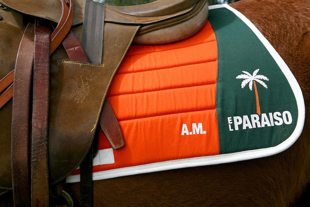 El Paraíso Polo meet-the-team day, Argentina
