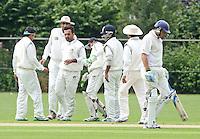 Cricket, UAE versus Netherlands, Rotterdam July 16th