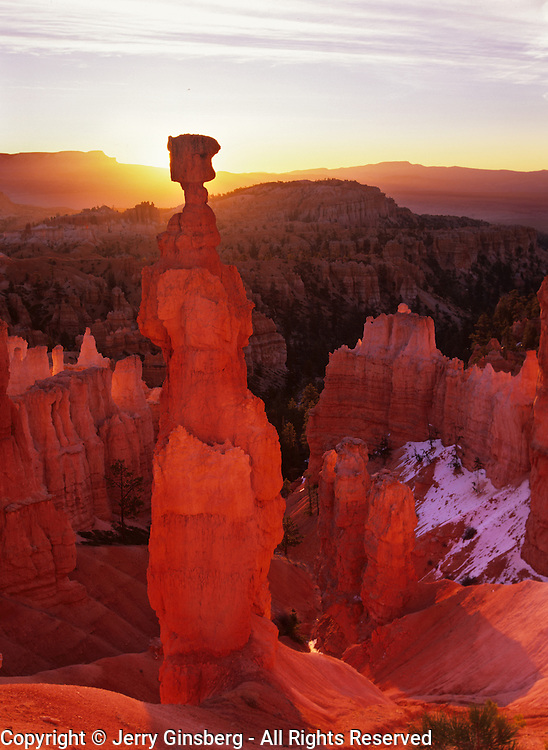 Perhaps the best known of all of the hoodoos in Bryce Canyon National Park, Utah, Thor's Hammer rises alone in the morning sun.