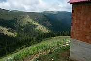 Yilmaz Civelek's home in the small village of Alaca Yaylası, in Turkey's northern Pontic mountains, and a common place for whistling as a method of communication.