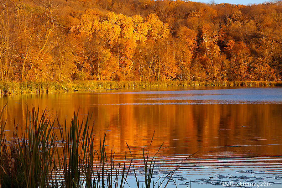Autumn colors in Maplewood State Park near Pelican Rapids, Minnesota, USA