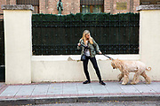 A woman with long blond hair struggles to take her blond haired Afghan hound out for a walk on the 30th of October 2019 on Calle Clarisas, in the Opanal area of Madrid, Spain.