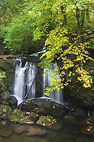 Whatcom Falls in Autumn Bellingham, Washington