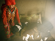 Atom Bo.<br /> Lambs are kept inside house because of the bitter cold. Evening and morning they are brought outside to their mum for milk. House of Abdul Rashid Khan,<br /> Winter expedition through the Wakhan Corridor and into the Afghan Pamir mountains, to document the life of the Afghan Kyrgyz tribe. January/February 2008. Afghanistan