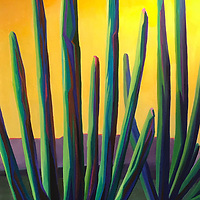 Organ pipe cacti send up columns that reach into the sky, forming wonderful silhouettes against the brilliant sunset colors.   24 x 48, oil on aluminum panel.   $3800